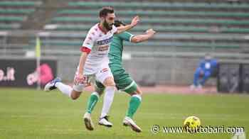 """Ds Matelica: """"Per i playoff vedo 5 squadre favorite. Secondo posto? L'Avellino dopo Bari..."""" - BARI CALCIO"""
