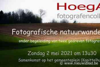 Met fotografen op wandel deze namiddag (Hoegaarden) - Het Nieuwsblad