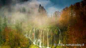 """""""Fragile"""", la bellezza della Natura in mostra presso Il Margutta"""