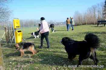 """Vlaams Belang jaloers op hondenweides bij buren: """"Roosdaal hinkt achterop""""<BR />"""