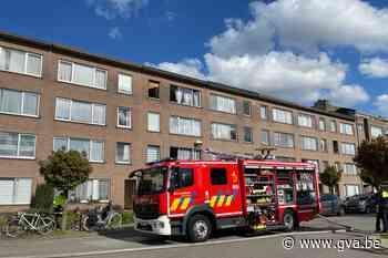 Brandweer redt vijf katten na brand in slaapkamer - Gazet van Antwerpen