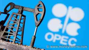 OPEC#39;s share of Indian oil imports plunges to 2 decade low: Trade