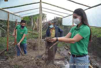 Beeco, alternativa para los residuos orgánicos en Manizales y Villamaría - La Patria.com