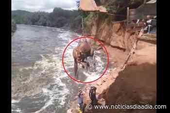 Rescatan caballo que cayó a río en Tocaima, Cundinamarca - Noticias Día a Día
