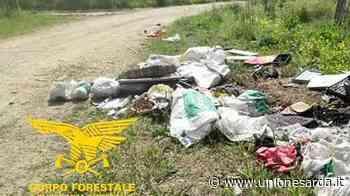 Santa Giusta, sanzionati quattro furbetti dei rifiuti - L'Unione Sarda.it - L'Unione Sarda