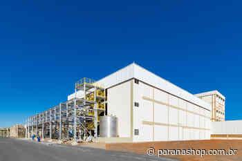 Fase de construção civil da fábrica da Ajinomoto é entregue em Pederneiras (SP) - Paranashop