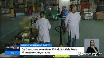 Banco Alimentar do Porto recebe muitos produtos de hortas de Vila do Conde e Póvoa do Varzim - RTP