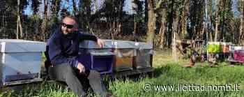 """Nova Milanese: freddo e pioggia, le api stanno al """"calduccio"""" e il miele è ai minimi - Il Cittadino di Monza e Brianza"""