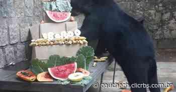 Reaberto ao público, zoológico de Sapucaia do Sul celebra 59 anos neste sábado - GZH