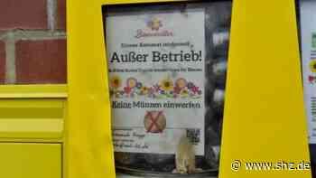 Kropp: Unbekannte zerstören Bienenfutter-Automat | shz.de - shz.de