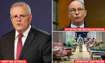 Paul Kelly warns Australians will die if India Covid travel ban extended
