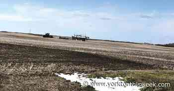 Moosomin farmer thankful for moisture - Yorkton This Week