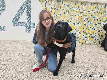 Levallois-Perret : Bérénice et son premier chien guide font leur rentrée au collège - Le Parisien