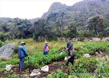 Agricultores de Villapinzón recibieron asesoría para asegurar sus cosechas - HSB Noticias