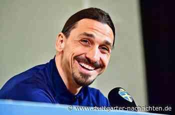 Sportsfreund des Tages - Zlatan Ibrahimovic wird endlich Schauspieler - Stuttgarter Nachrichten