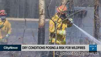 Dry weather sparks concern for fires - CityNews Edmonton