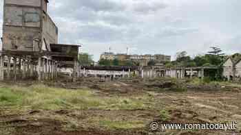 Lago ex Snia, Roma Natura ha chiesto alla Regione di allargare il monumento naturale all'ex fabbrica