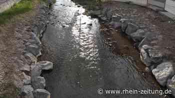Bauprojekt: Nabu wendet sich mit offenem Brief an die Stadt Simmern - Rhein-Zeitung