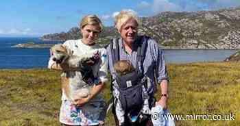 No10 refuse to deny Boris Johnson asked a donor to fund his nanny