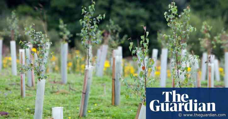 Invest in green jobs in parts of Britain worst hit by pandemic, report urges