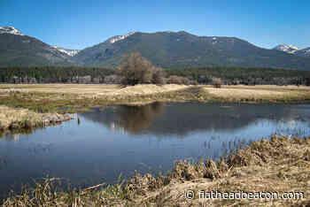Swan River National Wildlife Refuge Receives $1M Grant for Wetland Restoration - Flathead Beacon