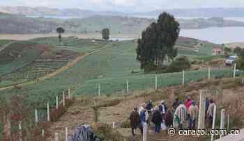 Impulsan reconversión de los cultivos de cebolla en el lago de Tota - Caracol Radio