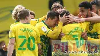 Norwich City: Xavi Quintilla proves his worth to Canaries - PinkUn