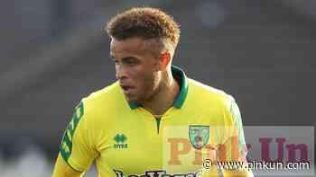 Norwich City: Carlton Morris key to Barnsley play-off tilt - PinkUn