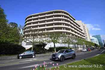 Les arbres de la rue Paul Lafargue à Puteaux ne seront finalement pas abattus - Defense-92.fr - Defense-92.fr - Vivez La Défense