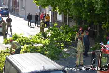 Weinig oproepen voor brandweerpost Zelzate tijdens storm