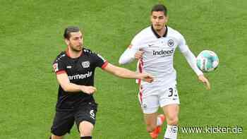 Dynamo und Co. - warum Dragovic zögert