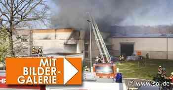 Unkraut beseitigt: Lagerhalle in Saarwellingen brennt ab - sol.de