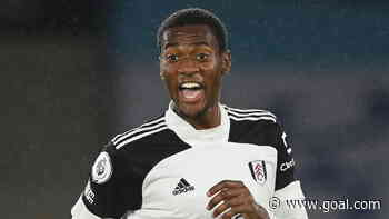 Fulham's Nigerians: What next after inevitable relegation?