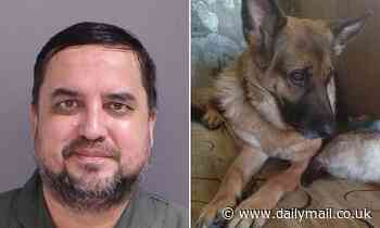 'Incredibly intoxicated' man who shot his dog then BARBECUED it over fire