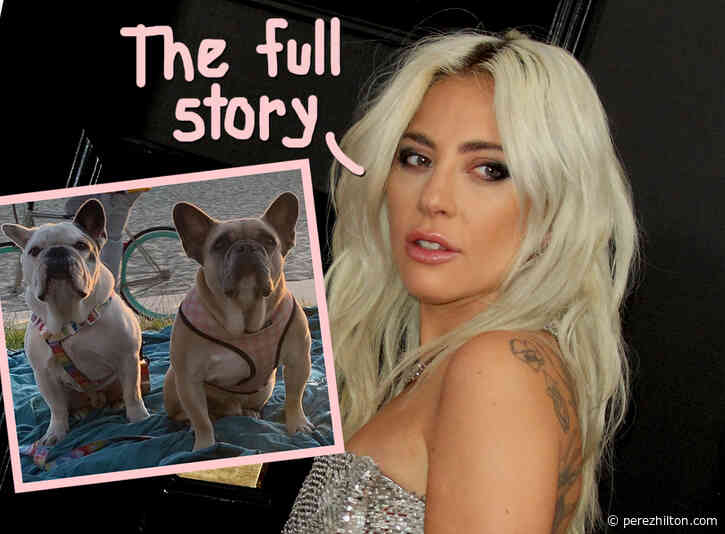 Lady GaGa's Dog Walker Tailed By Suspects -- New Details On Infamous Dognapping
