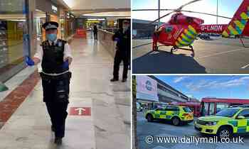 Man, 21, is stabbed to death inside London's Brent Cross shopping centre as police arrest two men