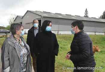 Agriculture - Le plan protéines victime de son succès en Corrèze - La Montagne