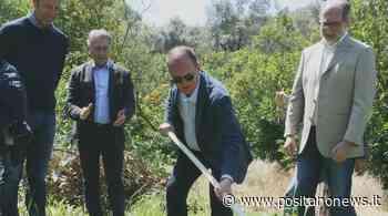 Sorrento: la Cooperativa Ceps chiede al Comune 5 milioni di euro per risarcimento danni - Positanonews - Positanonews