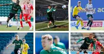 Vote for your Plymouth Argyle 2020/21 Player of the Year - Plymouth Live