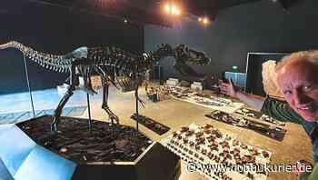 Dinopark in Denkendorf baut für US-Millionär ein spektakuläres T-Rex-Puzzle - donaukurier.de