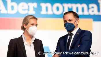 Bundestagswahl: Weidel will mit Chrupalla Spitzenteam bilden