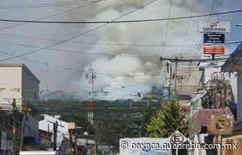 Incendio forestal arrasa hectáreas de bosque en Tlaxiaco - Quadratín Oaxaca