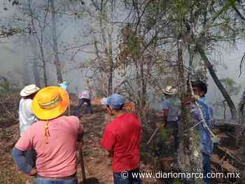 En Tlaxiaco, sofocan incendio en el Barrio de San Miguel y La Purísima Concepción - Diario Marca de Oaxaca