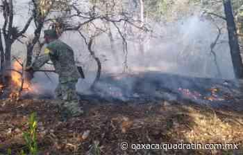 Aplica Sedena Plan DN-III-E por incendio forestal en Tlaxiaco 15:20 Óscar García - Quadratín Oaxaca