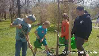 Die Schüler-Initiative »Plant-for-the-Planet« pflanzt Zeichen - kreisbote.de