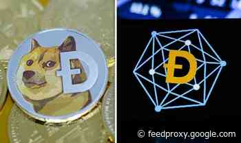 Dogecoin price: Why is dogecoin going up, will it keep rising?