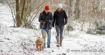 Britain's freak cold snap to last all week as mercury plunges to chilling -2C