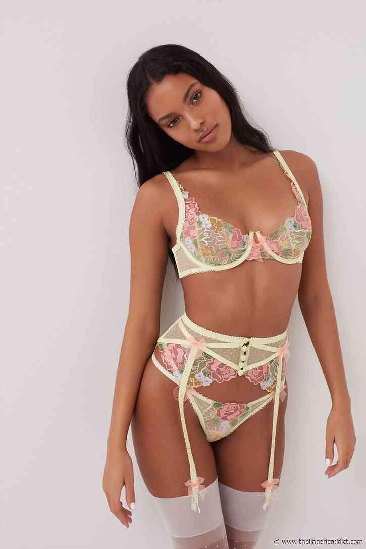 Lingerie Review: For Love and Lemons for Victoria's Secret Luella Bra Set in Size XL
