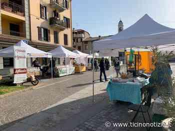 Arluno, venerdì 7 maggio secondo Mercato Contadino con Slow Food - Ticino Notizie