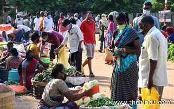 Coronavirus | Serpentine queues at shops ahead of partial lockdown - The Hindu